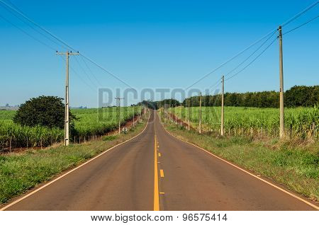 Brazilian rural road