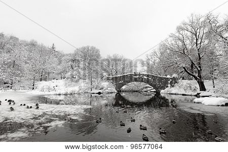 The Pond And Gapstow Bridge In Winter