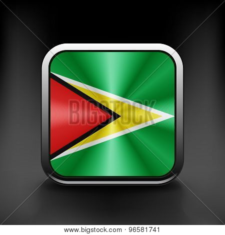 Guyana icon flag national travel icon country symbol button