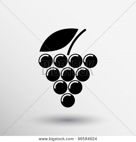 Label, logo design winery wine grape premium