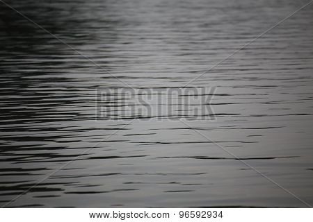 Ripple on the surface of the water