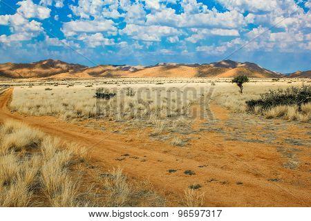 Desert sand road