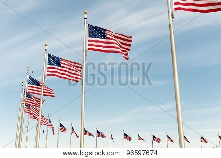 American flags on the blue sky in Washington DC