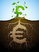 picture of bine  - Plant roots and tuber in shape of money symbol - JPG