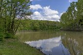 stock photo of dam  - Small dam in the beautiful forest - JPG