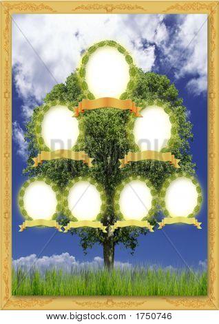 genealogische Baum
