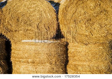 Round straw bale texture image.