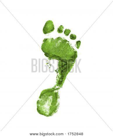 Light Green Footprint