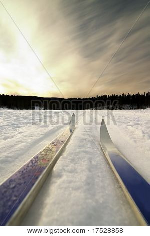 Skiing on a bright sunny day