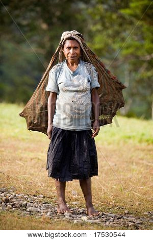 PAPUA, INDONESIA - CIRCA 2009: A traditional Indonesian woman carries wood in a homemade multipurpose sack.
