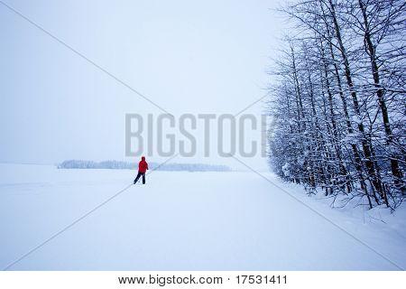 A single cross country skier in winter