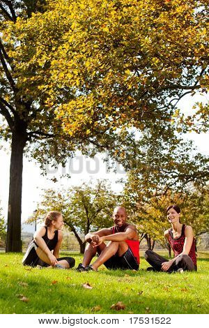 A group of people relaxing in the park after exercise