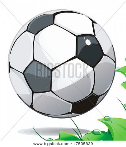 Soccer ball on green grass over white background
