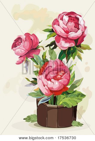 Flowers peony in a pot on light background, Elegance retro vector illustration.