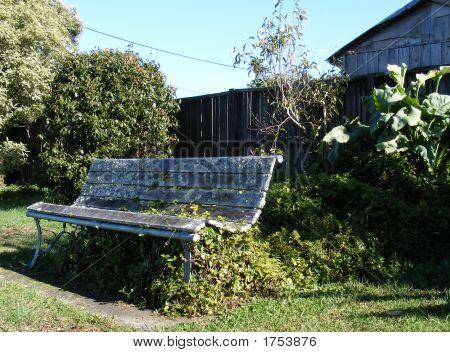 Derelict Park Bench