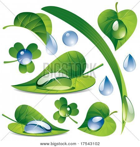 Raster version of vector image of a water drops with a green leafs