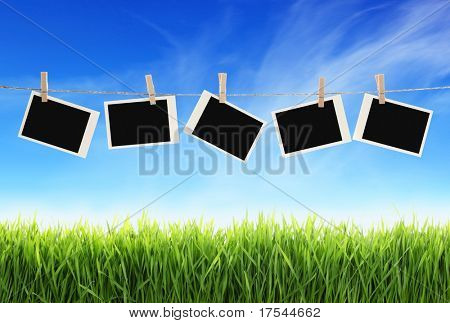 Blank photographs hanging on clothesline against blue sky over green grass