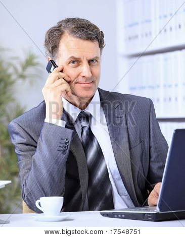Businessman sitting in office with laptop on telephone