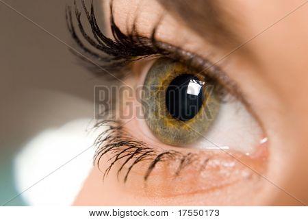 beautiful woman`s open colorful eye