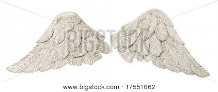 Pair of white wings over white