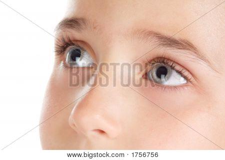 Eyes Watching Upwards