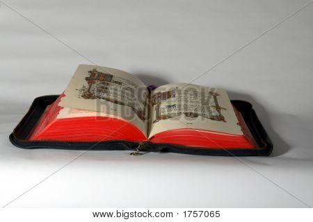 Bible On White