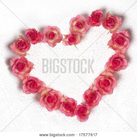 Heart shape from dewy roses isolated on white