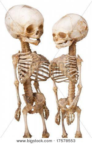 Esqueleto de médico humano duas crianças sobre branco
