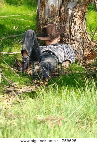 Asleep Under A Gum Tree