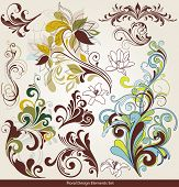 picture of floral design  - floral design elements - JPG