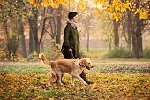 stock photo of stroll  - A girl and her dog  - JPG