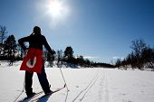 pic of easter_break  - A woman in a winter landscape cross country skiing - JPG