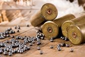 stock photo of duck-hunting  - Shotgun shells and shot on wood background - JPG