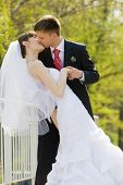 stock photo of wedding couple  - Colorful wedding shot of bride and groom kissing - JPG