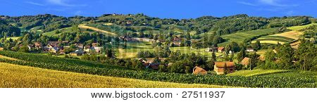 Green Landscape Village Scenery, With Corn And Hay Fields