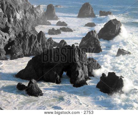 Bodega Head
