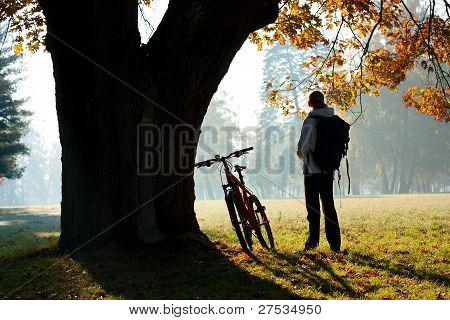 Woman Cyclist Lit The Rays Of Bright Morning Sunlight
