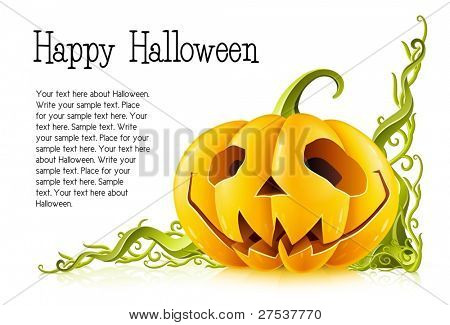 pumpkin for halloween on white background vector illustration