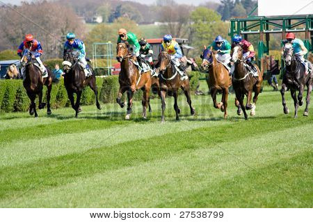 horserace with 8 horses being started