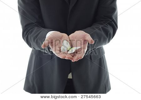 Businessman hands holding butterfly. Concept: have scruples about something, fragility.