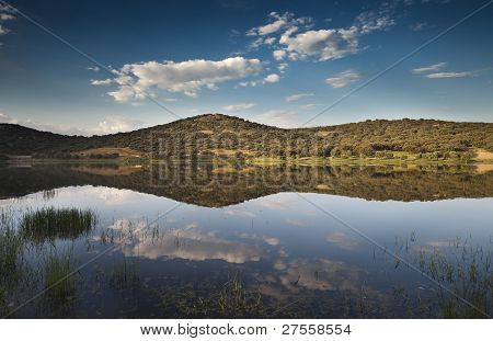 Landscape Reflected