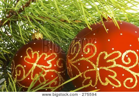 Decorated Branch Of Pine