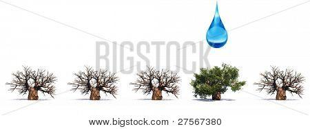 Alta resolución conceptual hilera de árboles 3D sin hojas y uno verde de verano o primavera del árbol con un