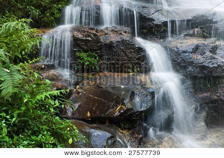 Smooth Waterfall And Green Leaves