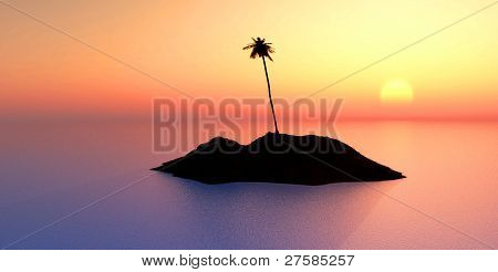coconut tree on island at sunset