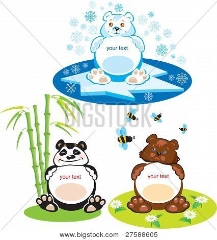 Set of oval frames - animals for kids - 3 bears - brown bear, panda, polar bear