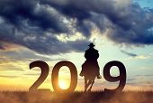 Silhouette of a cowboy riding a horse in the sunset. Forward to the New Year 2019. poster