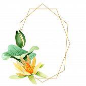 Yellow Lotus. Floral Botanical Flower. Watercolor Background Illustration Set. Frame Border Ornament poster