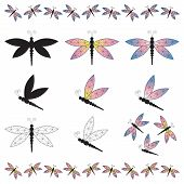 pic of dragonflies  - Assorted Set of Dragonflies including isolated and borders Borders - JPG
