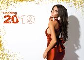 New Year Picture For Calendar Or Holiday Card. Attractive Lady In Red Dress With Bow On The Back. Go poster